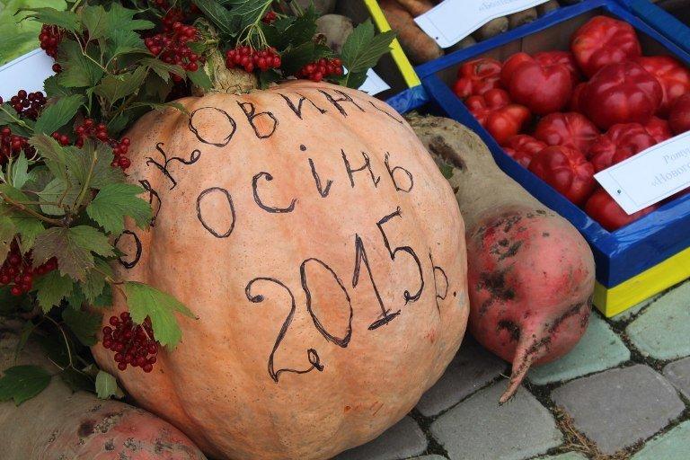 Як буковинці ярмаркували на «Буковинській осені – 2015», фото-3