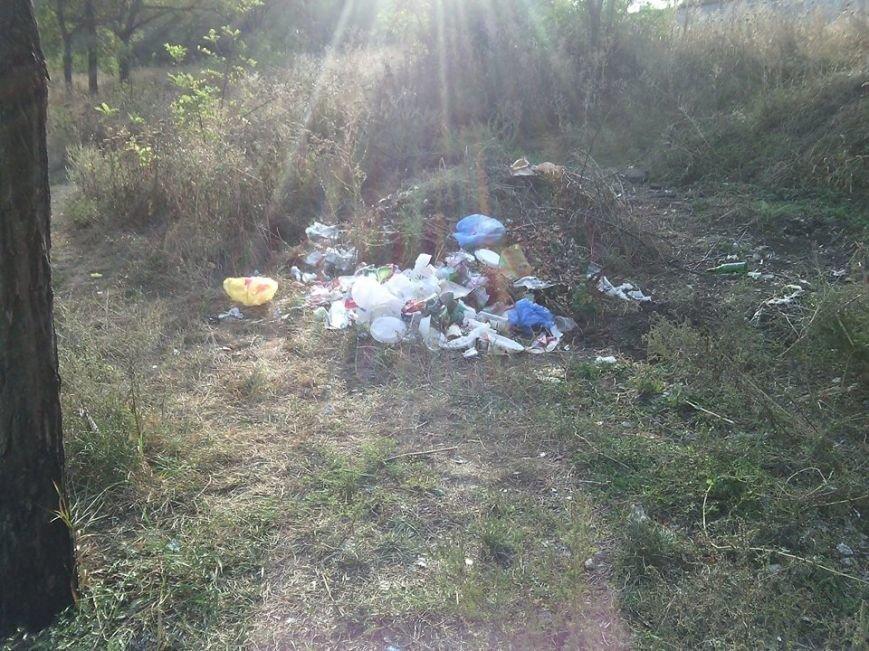 Криворожане отдохнули на чистой Соколовке, оставив после себя горы мусора (ФОТО), фото-5