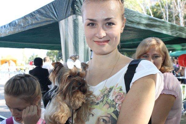 В Краматорске прошла выставка собак всех пород (фото) - фото 1