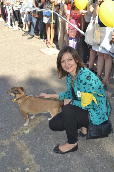 В Краматорске прошла выставка собак всех пород (фото) - фото 11