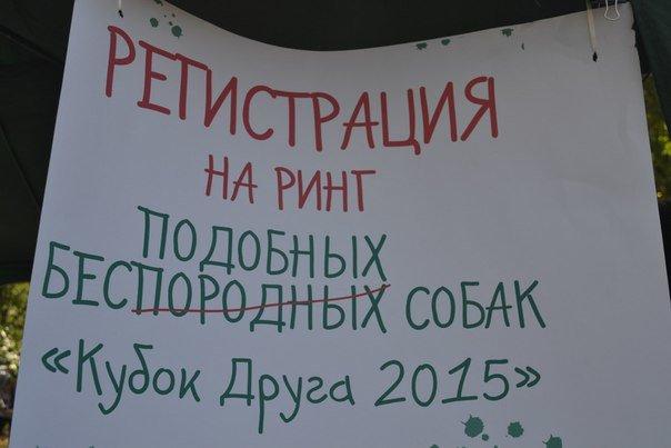В Краматорске прошла выставка собак всех пород (фото) - фото 4