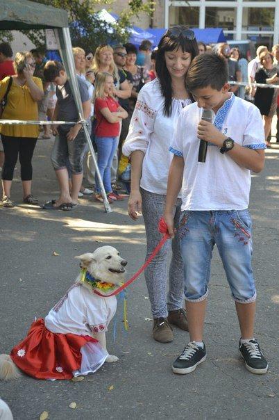 В Краматорске прошла выставка собак всех пород (фото) - фото 10