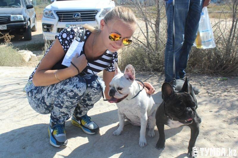 Выставка собак прошла в Актау (фото) (фото) - фото 15