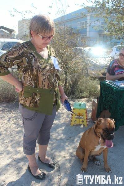 Выставка собак прошла в Актау (фото) (фото) - фото 9