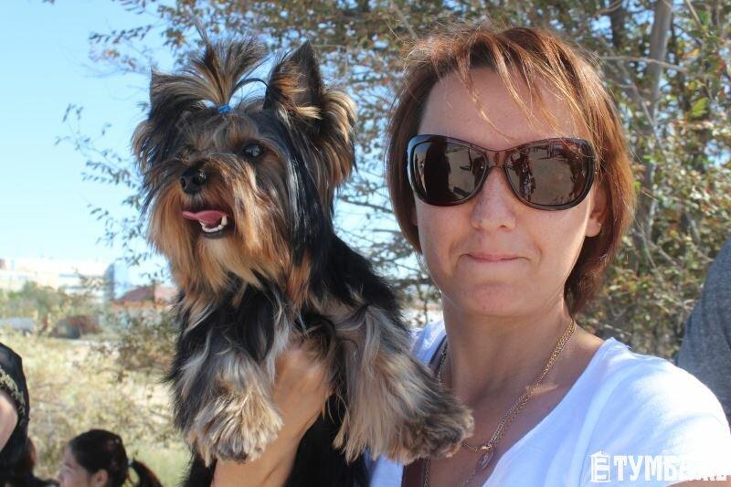 Выставка собак прошла в Актау (фото) (фото) - фото 6