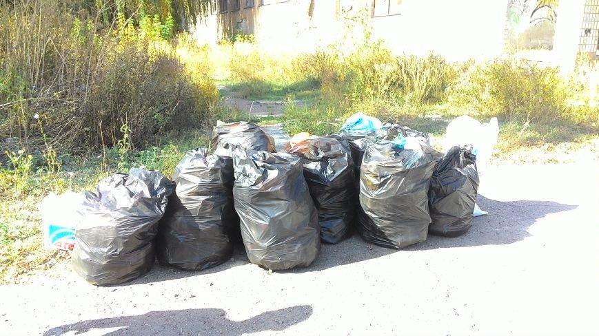 В двух микрорайонах Павлограда волонтеры собрали больше 40 мешков мусора, фото-2