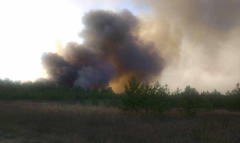 Что горит в Ульяновске? Город периодически накрывает дымом и гарью, фото-4