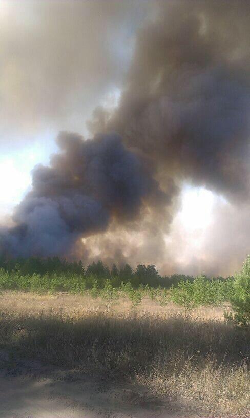 Что горит в Ульяновске? Город периодически накрывает дымом и гарью, фото-3