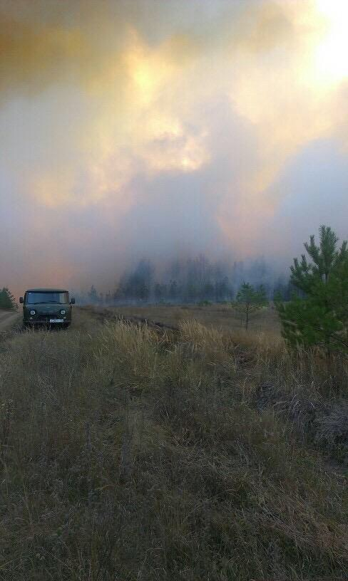 Что горит в Ульяновске? Город периодически накрывает дымом и гарью, фото-1