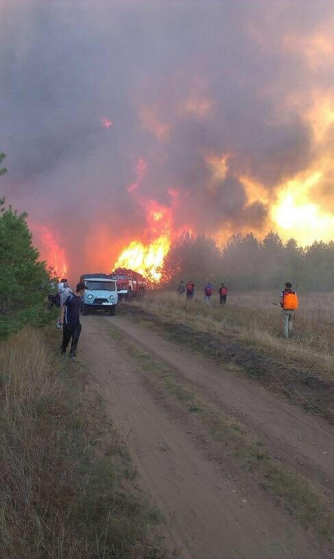 Что горит в Ульяновске? Город периодически накрывает дымом и гарью, фото-2