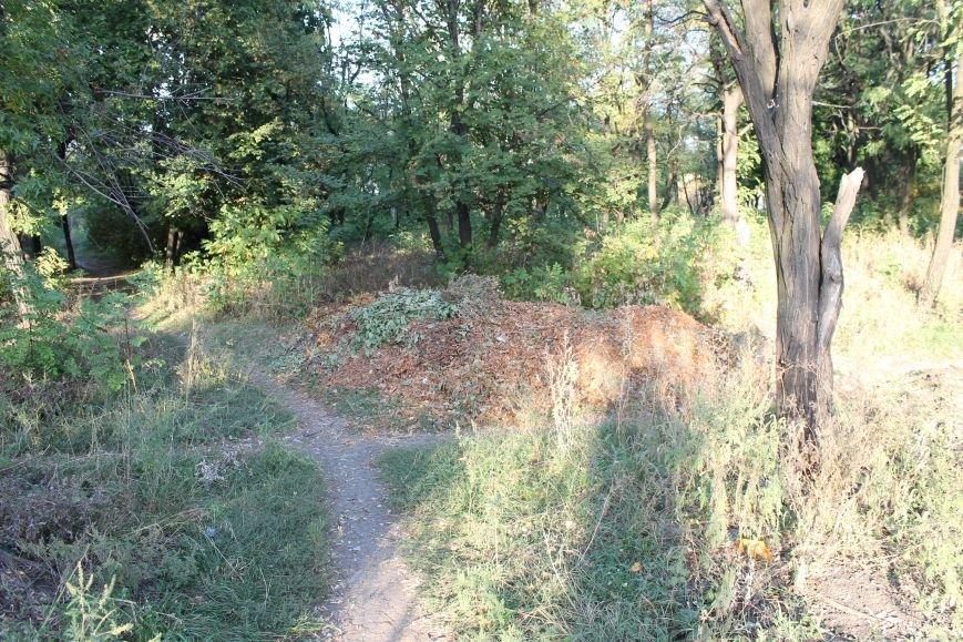 В городе Белицкое два парка?(ФОТО), фото-5