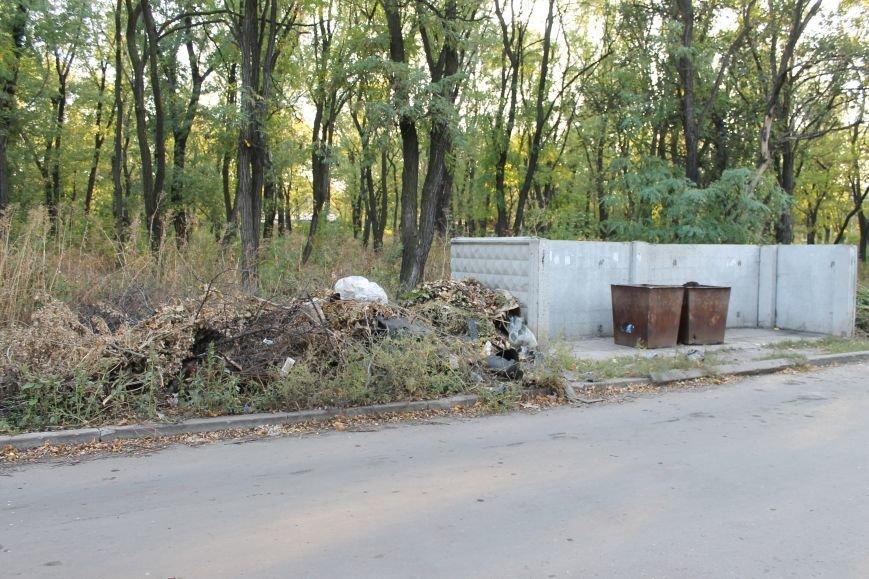 В городе Белицкое два парка?(ФОТО), фото-10