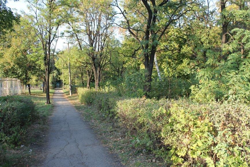 В городе Белицкое два парка?(ФОТО), фото-3