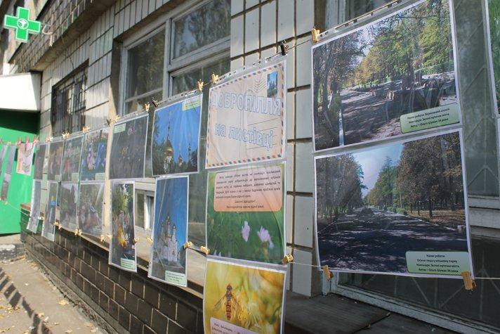 В Доброполье праздник в честь Всеукраинского Дня библиотек удался на славу(ФОТО), фото-3