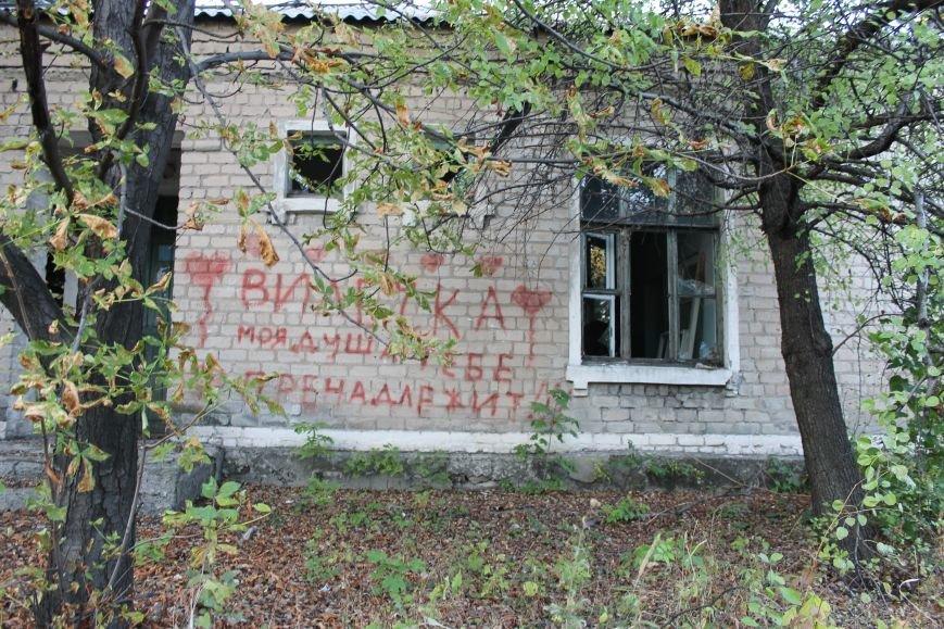 Белицкое без войны или судьба осиротевших зданий города (ФОТО), фото-27