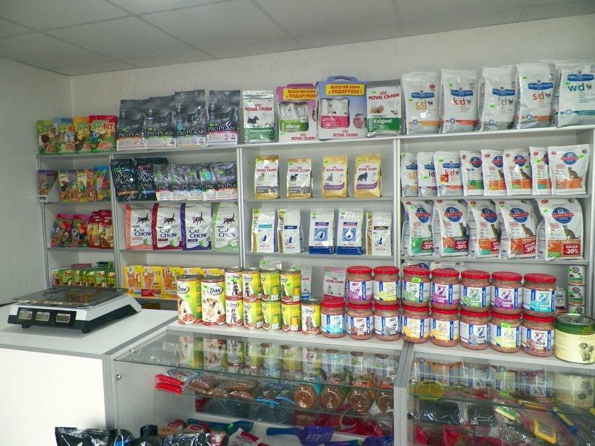 В центре Николаева появилась аптека для домашних любимчиков, фото-4
