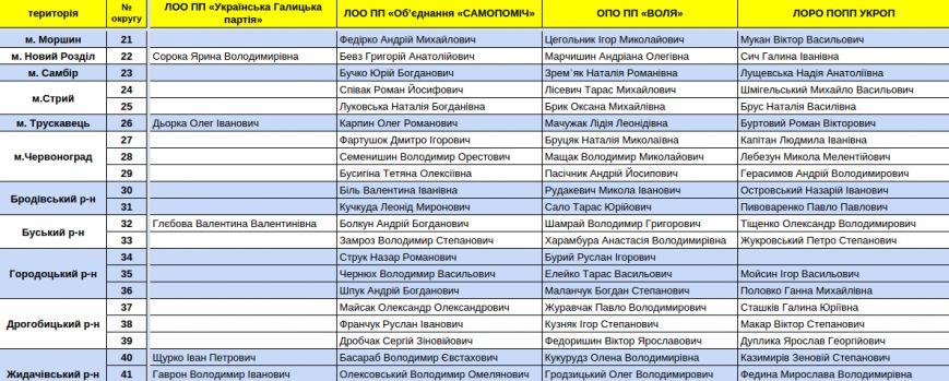 Зареєстровані кандидати в депутати Львівської облради. Повний список (фото) - фото 6