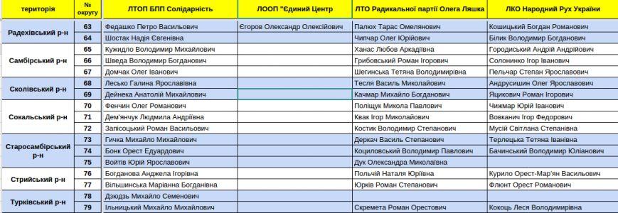 Зареєстровані кандидати в депутати Львівської облради. Повний список (фото) - фото 17