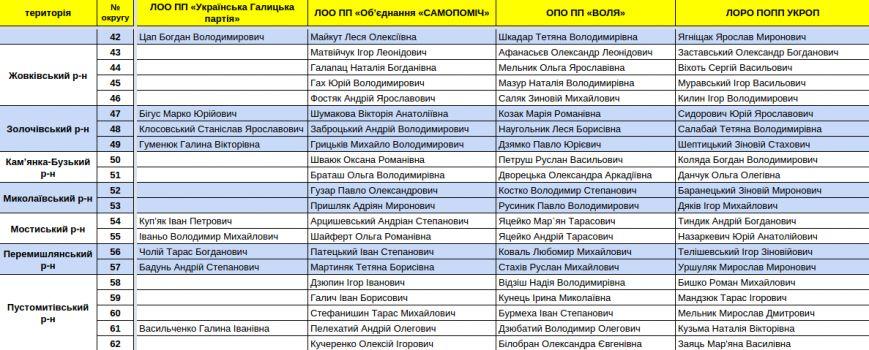 Зареєстровані кандидати в депутати Львівської облради. Повний список (фото) - фото 10
