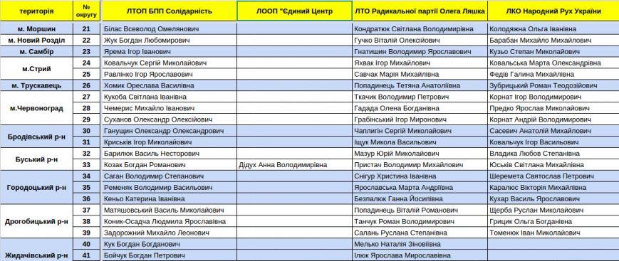 Зареєстровані кандидати в депутати Львівської облради. Повний список (фото) - фото 7