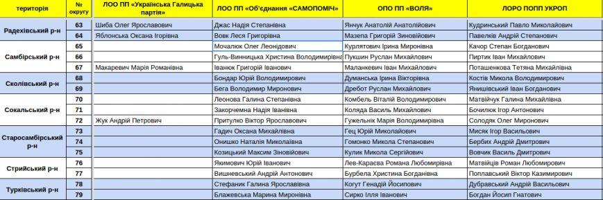 Зареєстровані кандидати в депутати Львівської облради. Повний список (фото) - фото 15