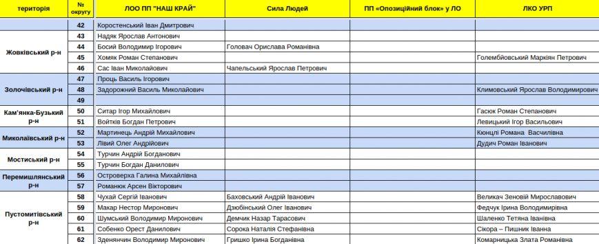 Зареєстровані кандидати в депутати Львівської облради. Повний список (фото) - фото 12