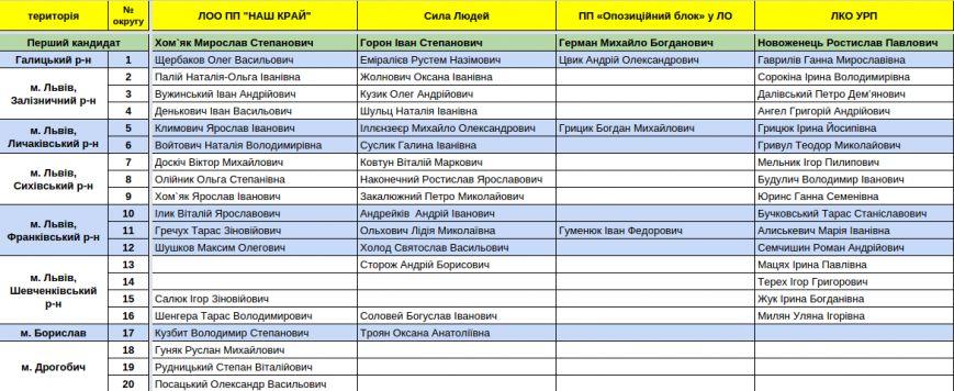 Зареєстровані кандидати в депутати Львівської облради. Повний список (фото) - фото 4
