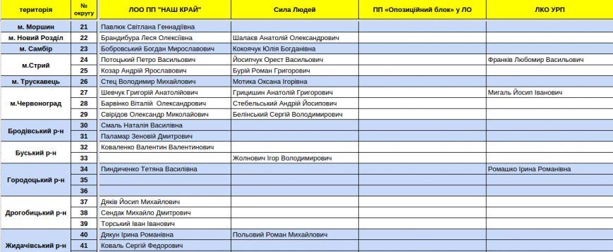 Зареєстровані кандидати в депутати Львівської облради. Повний список (фото) - фото 8