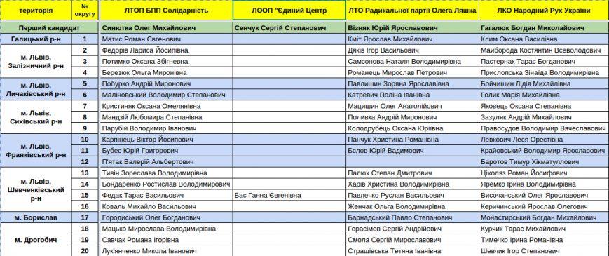 Зареєстровані кандидати в депутати Львівської облради. Повний список (фото) - фото 3