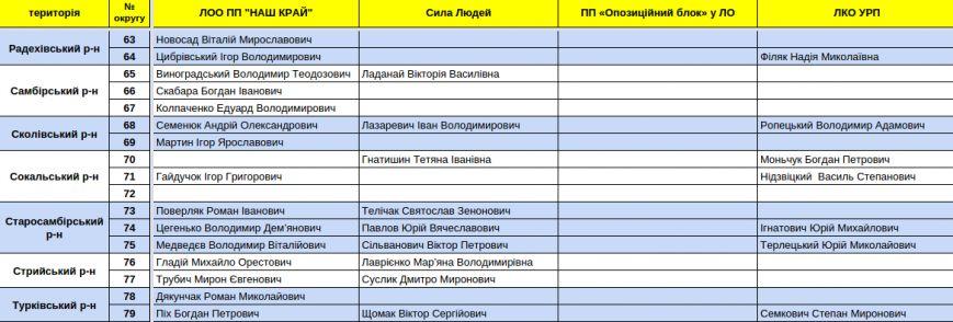 Зареєстровані кандидати в депутати Львівської облради. Повний список (фото) - фото 19