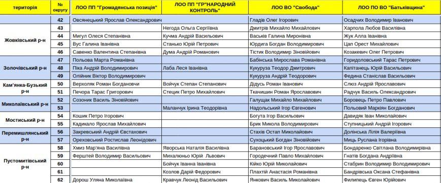 Зареєстровані кандидати в депутати Львівської облради. Повний список (фото) - фото 9