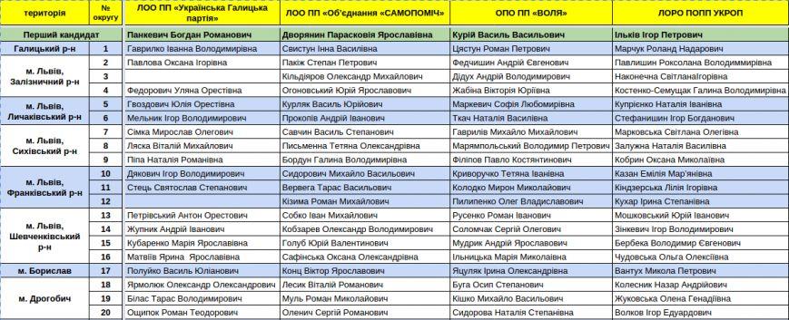Зареєстровані кандидати в депутати Львівської облради. Повний список (фото) - фото 2