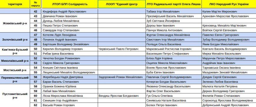 Зареєстровані кандидати в депутати Львівської облради. Повний список (фото) - фото 11