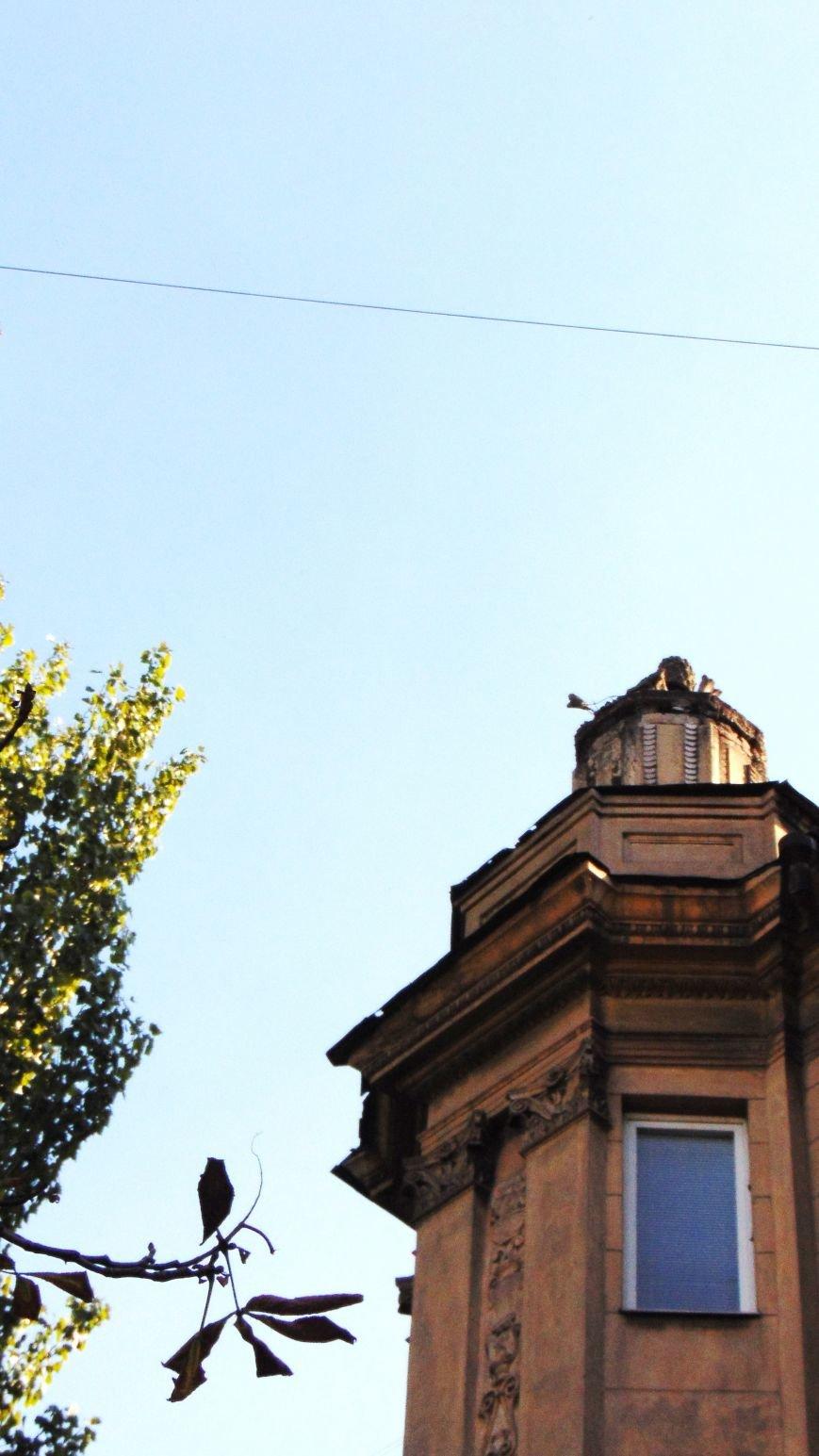 Фотопятница: «Город над головой» (фото) - фото 14