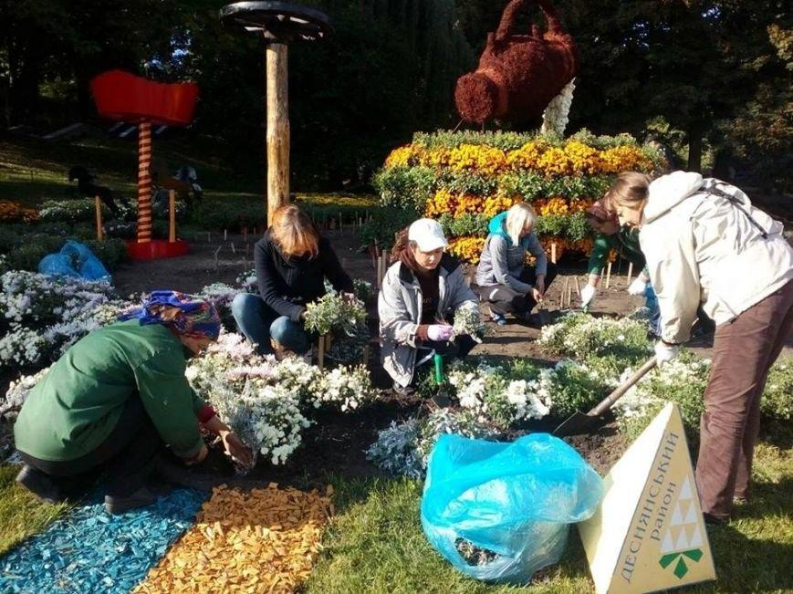 Певческое поле подготавливают к выставке хризантем (ФОТОФАКТ), фото-2