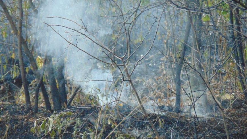 В Приморском парке Мариуполя у памятника морякам-десантникам выгорели зеленые насаждения (ФОТОФАКТ) (фото) - фото 1