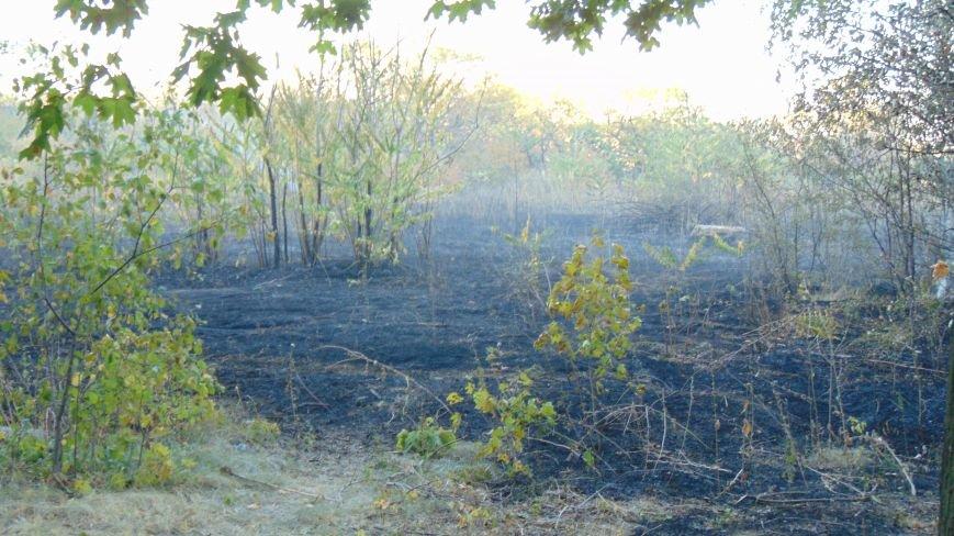 В Приморском парке Мариуполя у памятника морякам-десантникам выгорели зеленые насаждения (ФОТОФАКТ) (фото) - фото 2