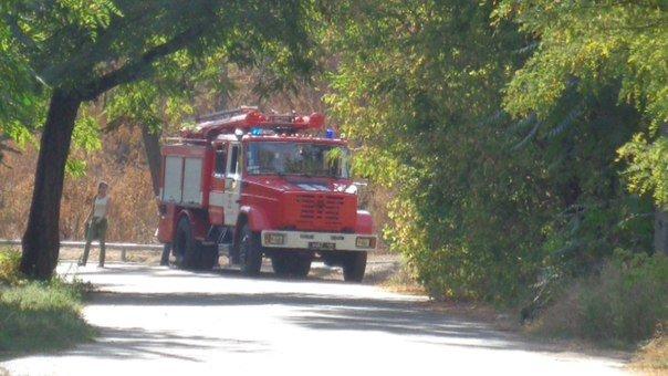 В Мариуполе пожарные расчеты противостояли поджигателям (ФОТОФАКТ), фото-1
