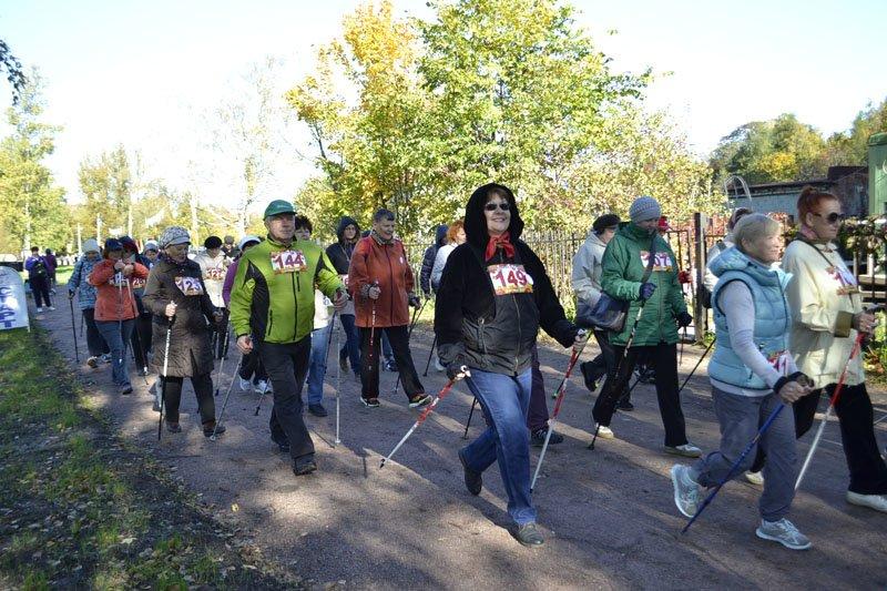 Энергично провели Всероссийский день ходьбы в городе Пушкине (фото) - фото 5