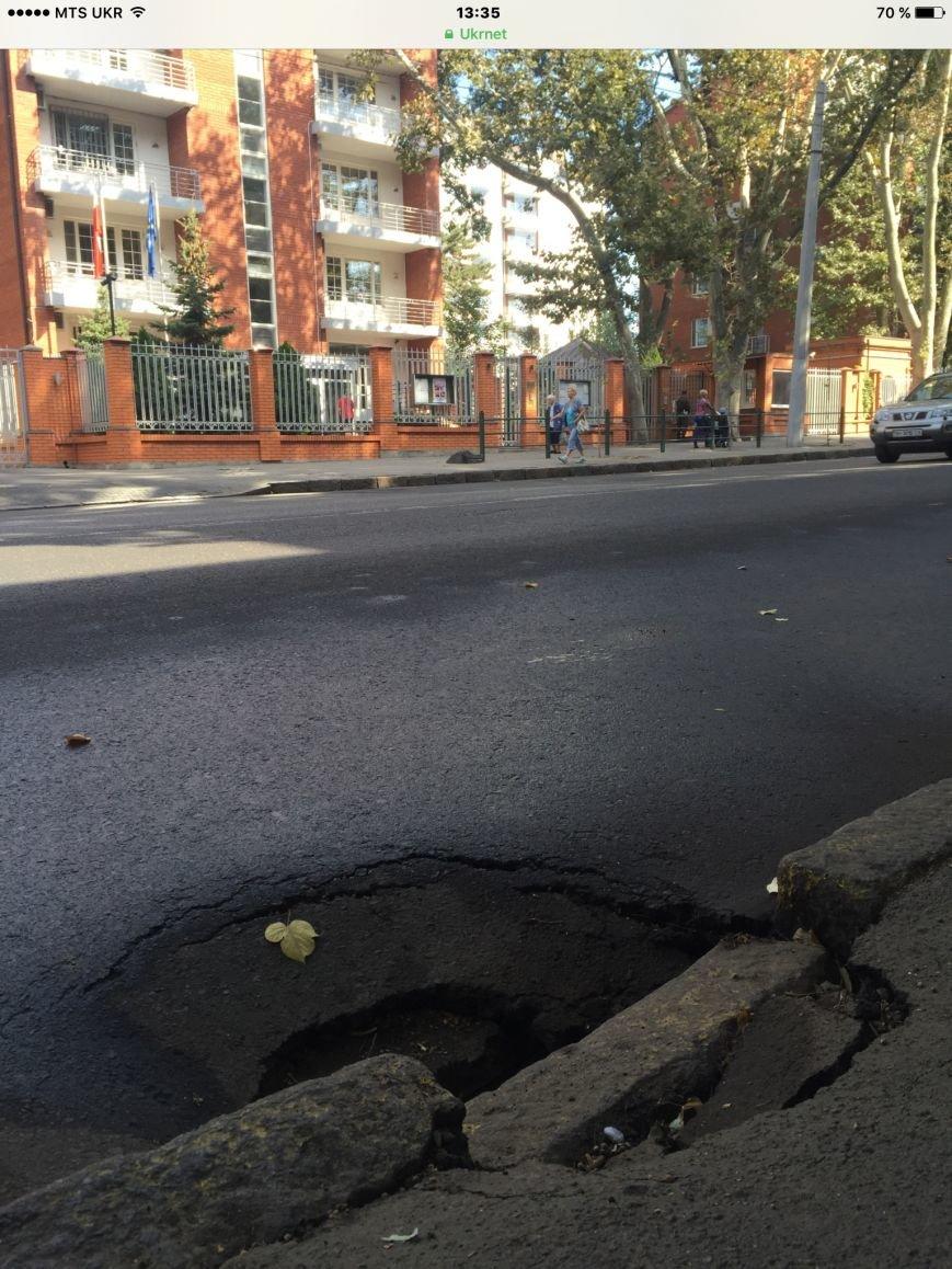 В центре Одессы из провала на дороге выглядывают крысы (ФОТО) (фото) - фото 1