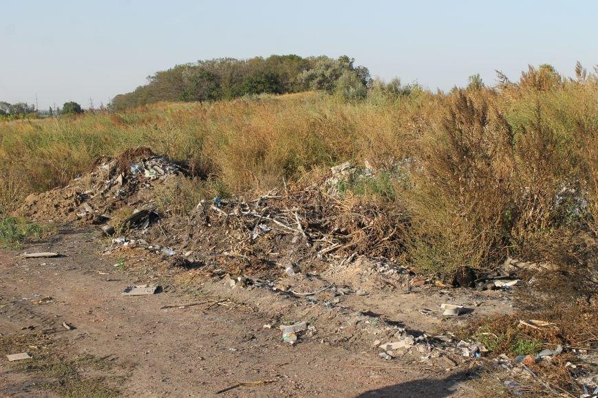 Несанкционированная свалка за городом Белицкое (ФОТО), фото-15