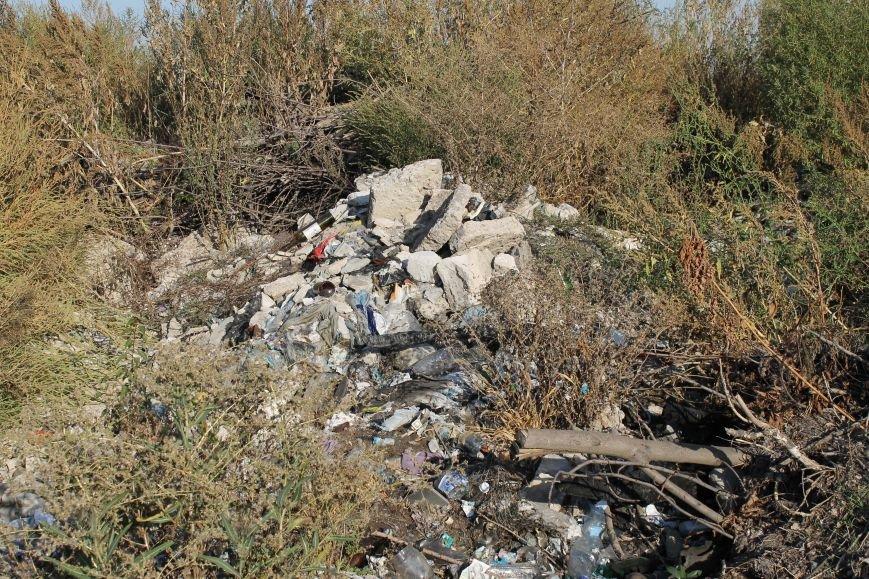Несанкционированная свалка за городом Белицкое (ФОТО), фото-16