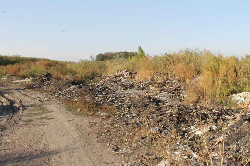 Несанкционированная свалка за городом Белицкое (ФОТО), фото-10