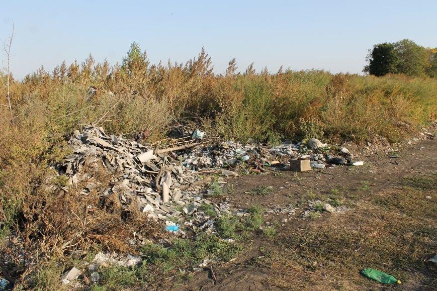 Несанкционированная свалка за городом Белицкое (ФОТО), фото-19