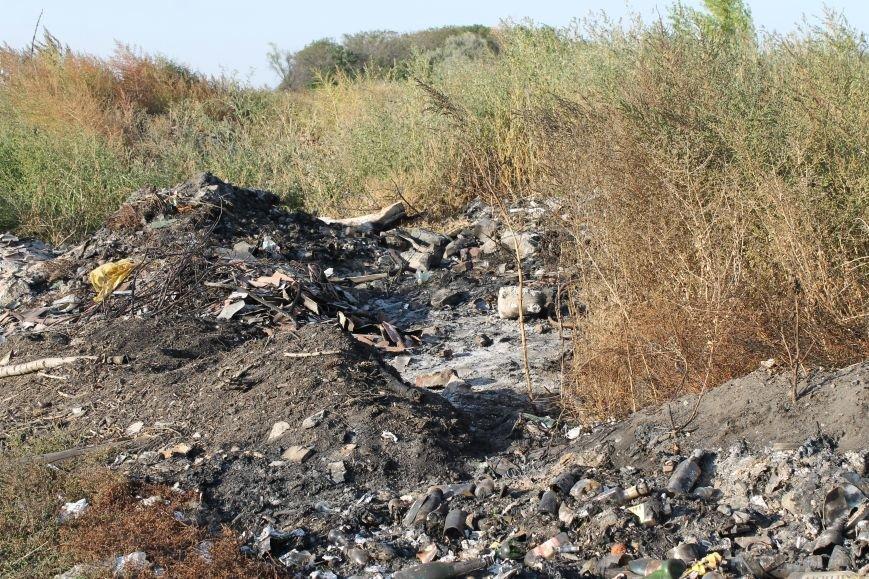 Несанкционированная свалка за городом Белицкое (ФОТО), фото-13