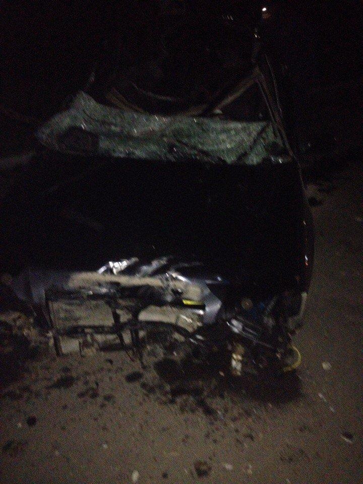 Сьогодні біля Вінниці жінка збила лося (фото+відео) (фото) - фото 9