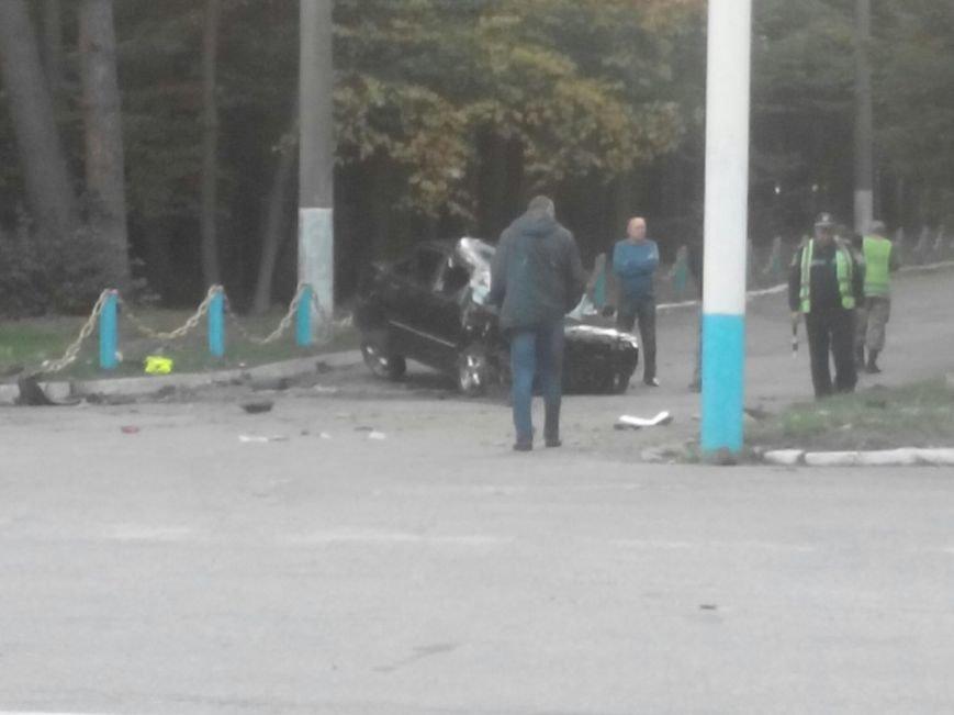 Сьогодні біля Вінниці жінка збила лося (фото+відео) (фото) - фото 8