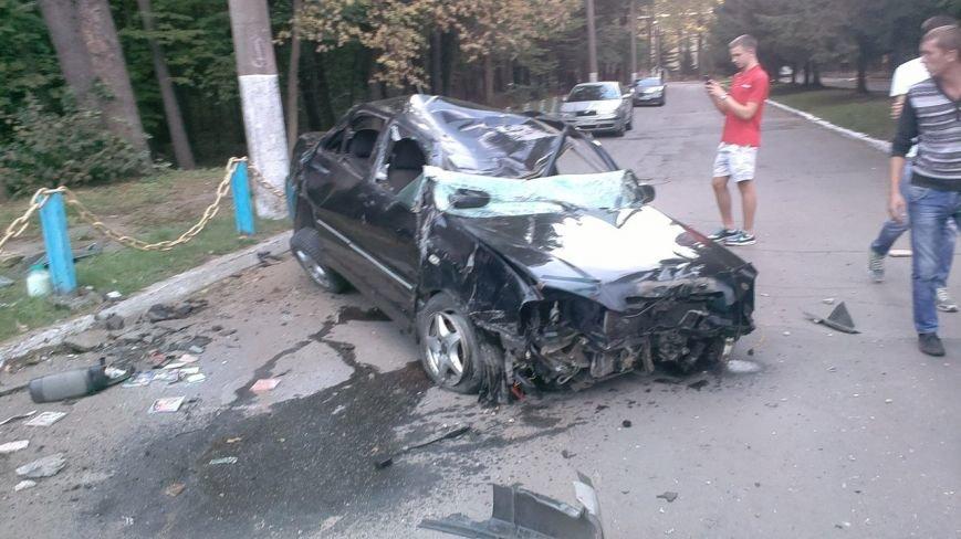 Сьогодні біля Вінниці жінка збила лося (фото+відео) (фото) - фото 5