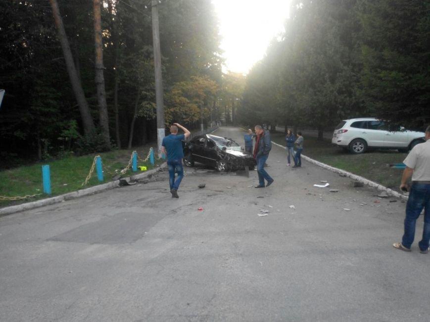 Сьогодні біля Вінниці жінка збила лося (фото+відео) (фото) - фото 6