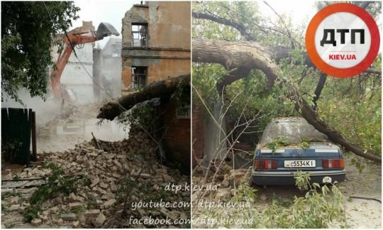 В Киеве экскаватор уронил дерево на автомобиль (ФОТО) (фото) - фото 1